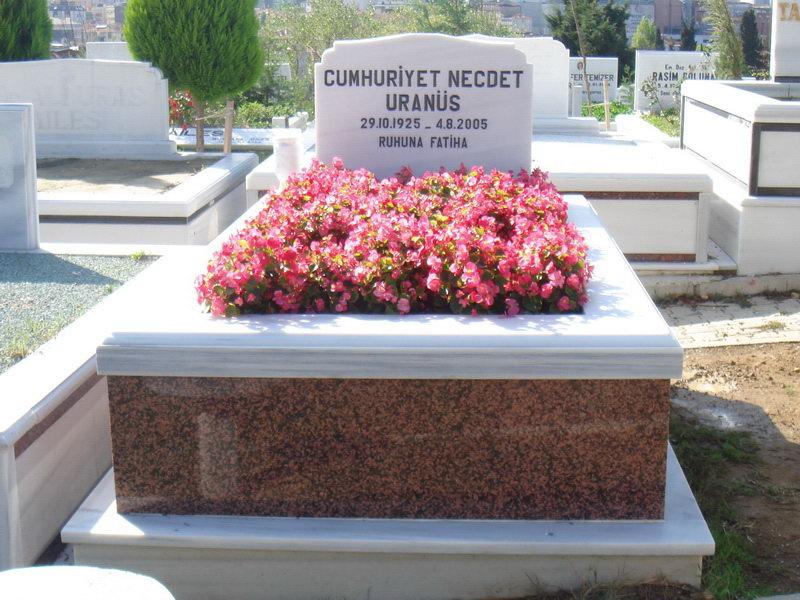 mezar çiçek çeşitleri, mezar çiçek bakım, mezar bakım, mezar çiçek dikmek, mezar çiçekleri, mezar üstüne çiçek, mezar çiçeği zyra, mezar çiçeği zyra kaç rp,